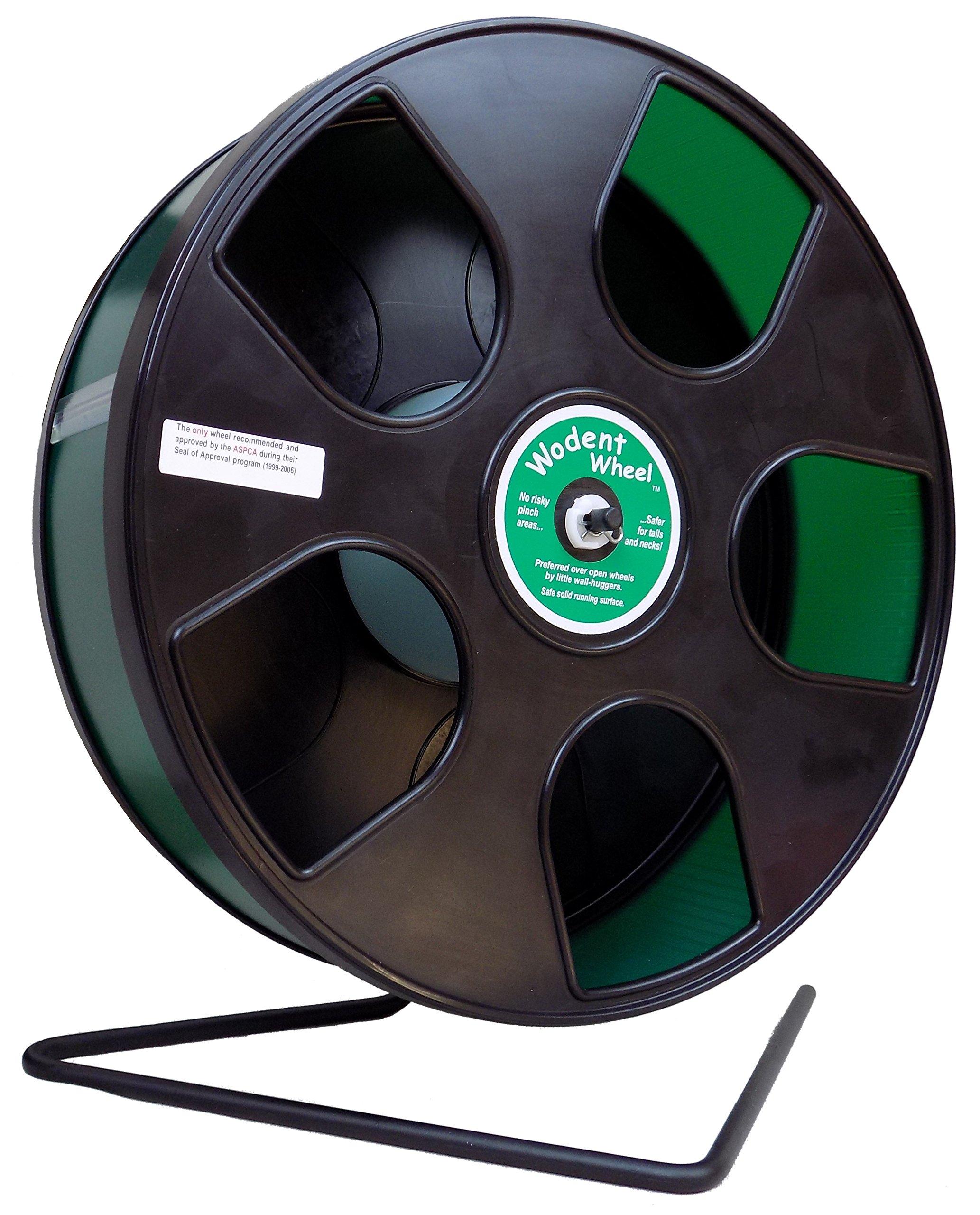 Wodent Wheel Senior & Tail Shield - 11'' running wheel for small pets