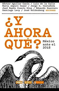 ¿Y ahora qué? México ante el 2018 (Spanish Edition)