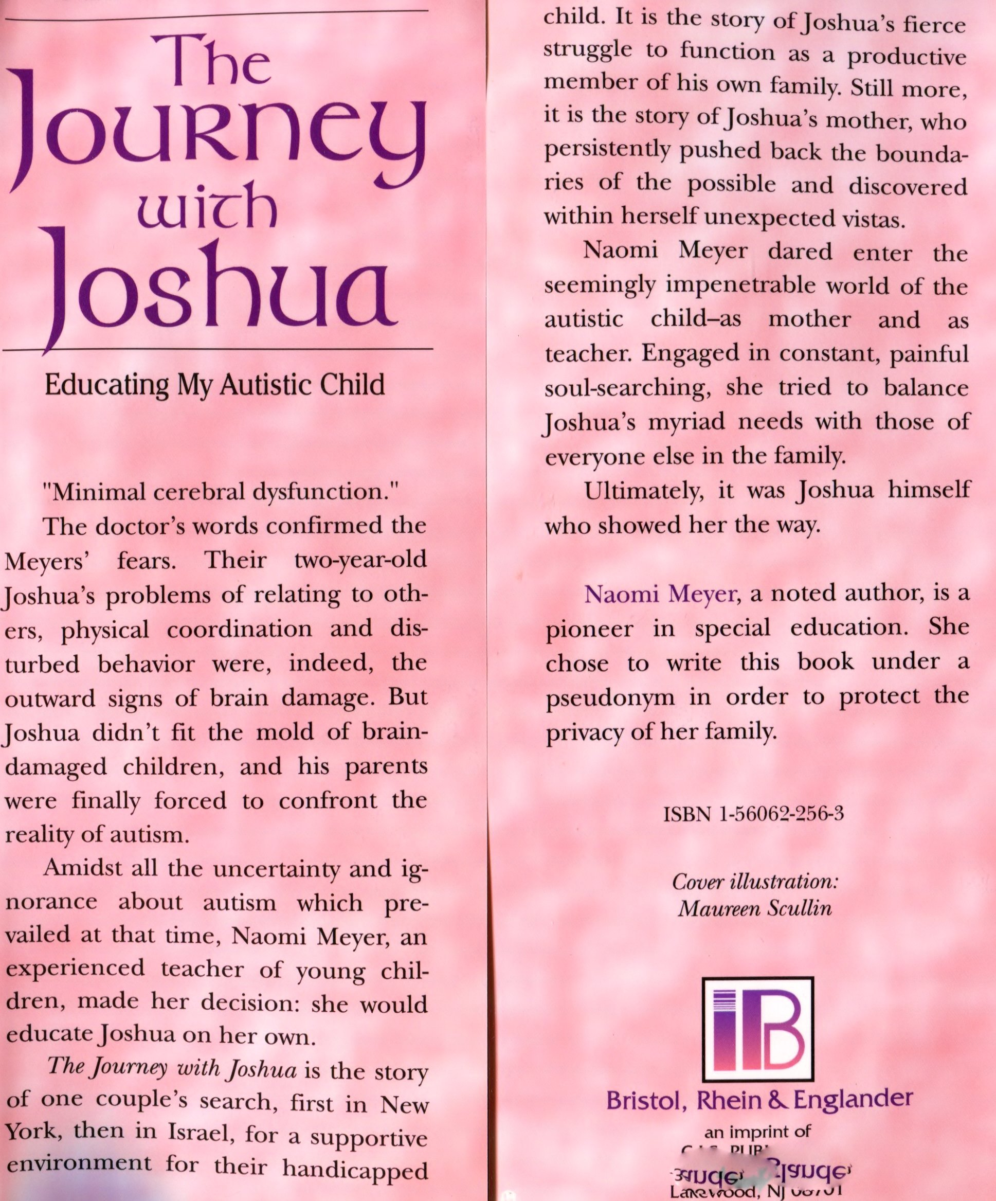 The journey with Joshua Educating my autistic child Naomi Meyer