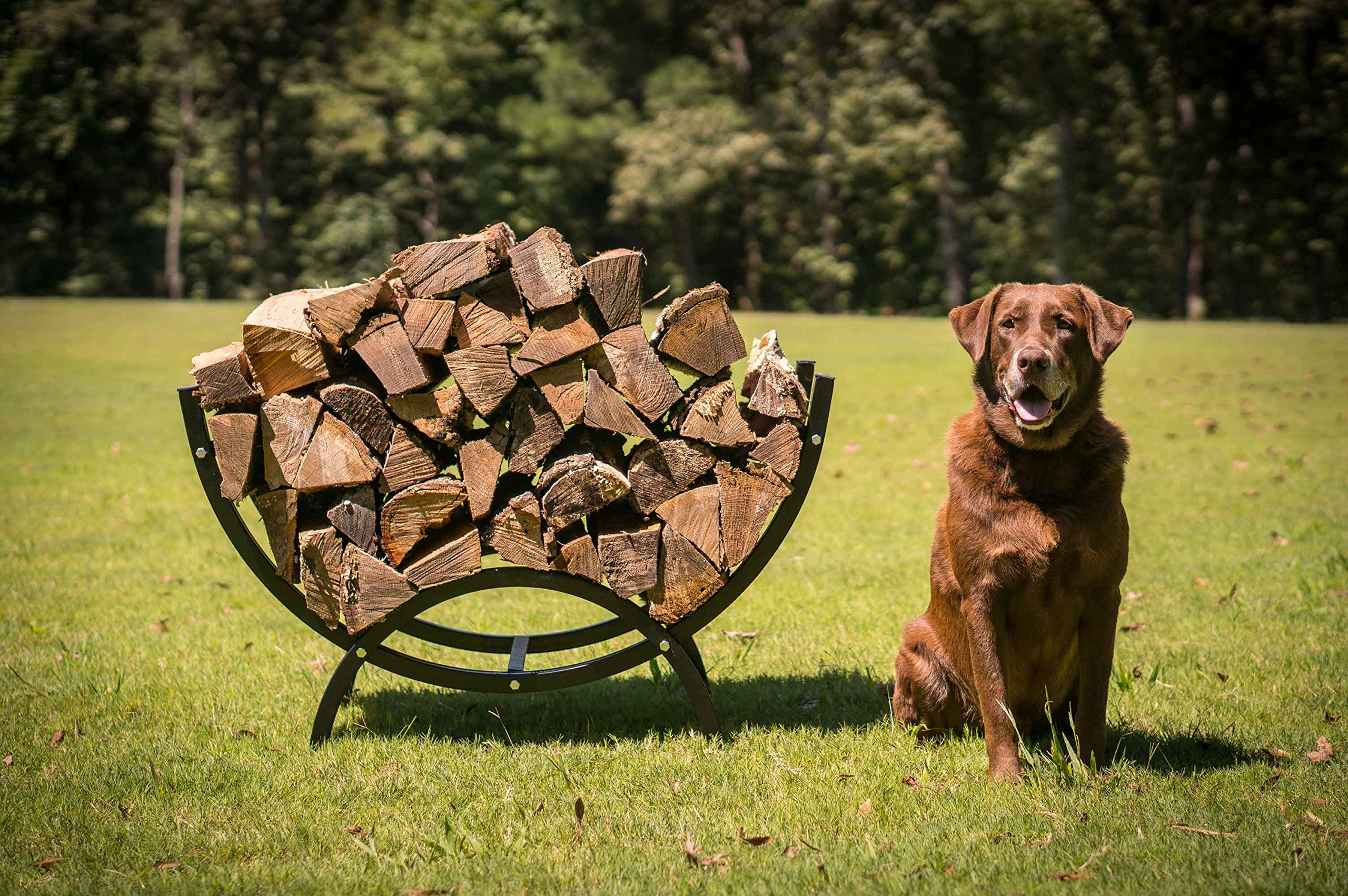 Titan Outdoors 39'' Curved Crescent Firewood Log Rack Wood Holder Lumber Storage by Titan Outdoors