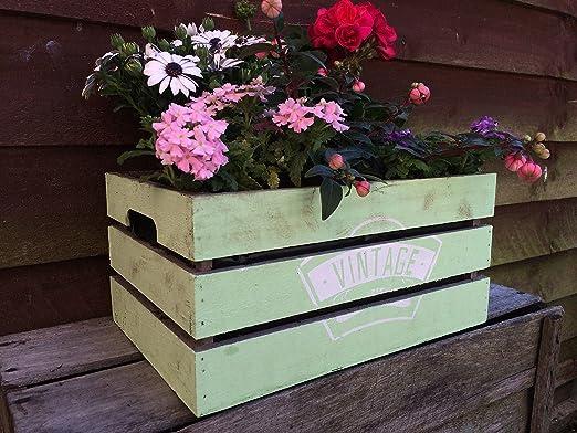Cajas de madera de estilo vintage caja de maceta de jardín de frutas Chic pantalla Hamper: Amazon.es: Jardín