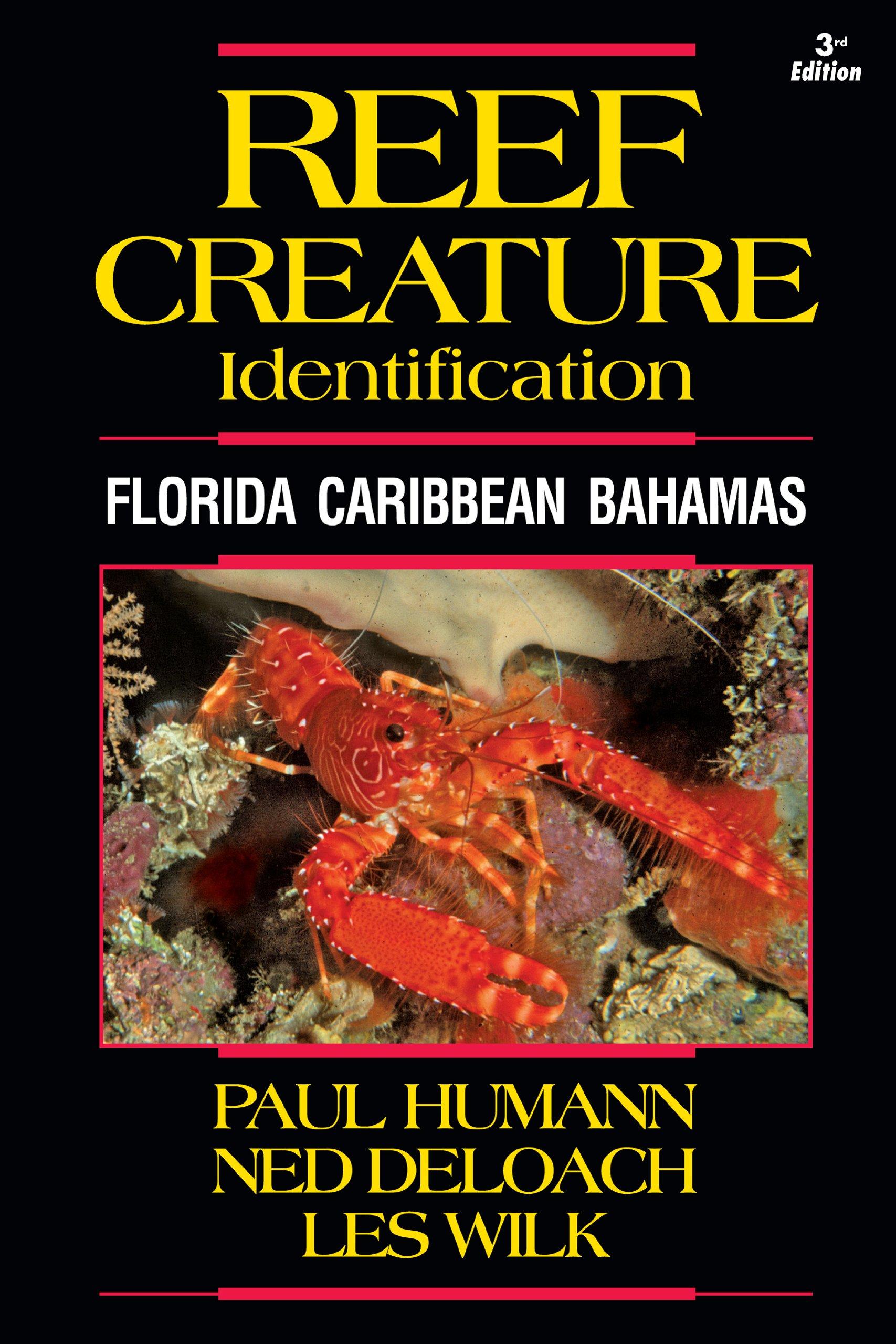 reef creature identification florida caribbean bahamas 3rd edition
