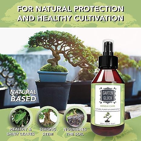 Amazon Com Garten Gluck Organico Bonsai Alimentacion 8 5 Fl Oz Nutrientes Y Vitaminas Para Arboles De Bonsai Kit De Cuidado De Bonsai Accesorios Alternativa Al Fertilizante I Peppermint Jardin Y Exteriores