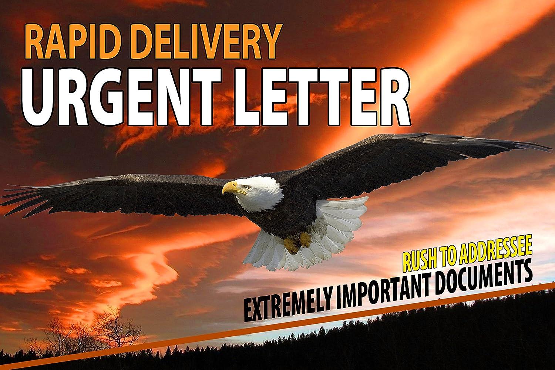 6 x 9 Express Envelope (ORANGE / BLUE) XpressEnvelopes.com XG 1005