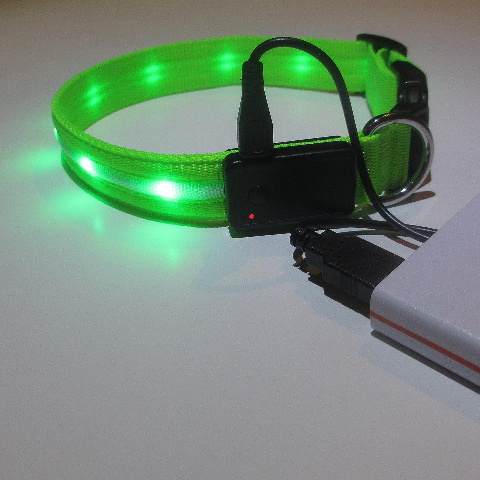 Blazin' Safety LED Dog Leash - USB Rechargeable - 3