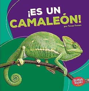 Es un camaleón / Its a Chameleon (Animales De La Selva Tropical / Rain Forest
