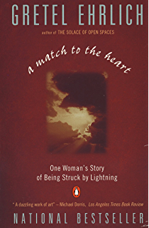 Amazon the solace of open spaces essays ebook gretel ehrlich a match to the heart one womans story of being struck by lightning fandeluxe Images
