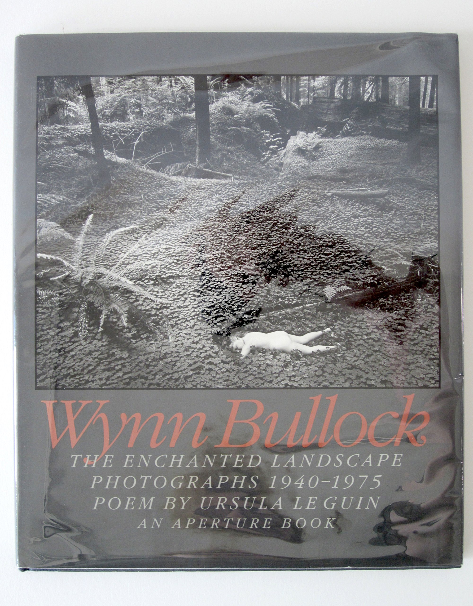 The Enchanted Landscape: Photographs, 1940-75 por Wynn Bullock
