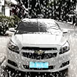 Autofay Premium Windshield Snow Cover& for Cars & CRVs - Sizes for ALL Vehicles - Covers Wipers - Snow, Ice, Frost Guard - No More Scraping! - Door Flaps - Windproof Magnetic Edges-N (Standard)