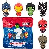 Hallmark Christmas Ornament, Marvel Super Heroes Series 1 Mystery Blind Bag