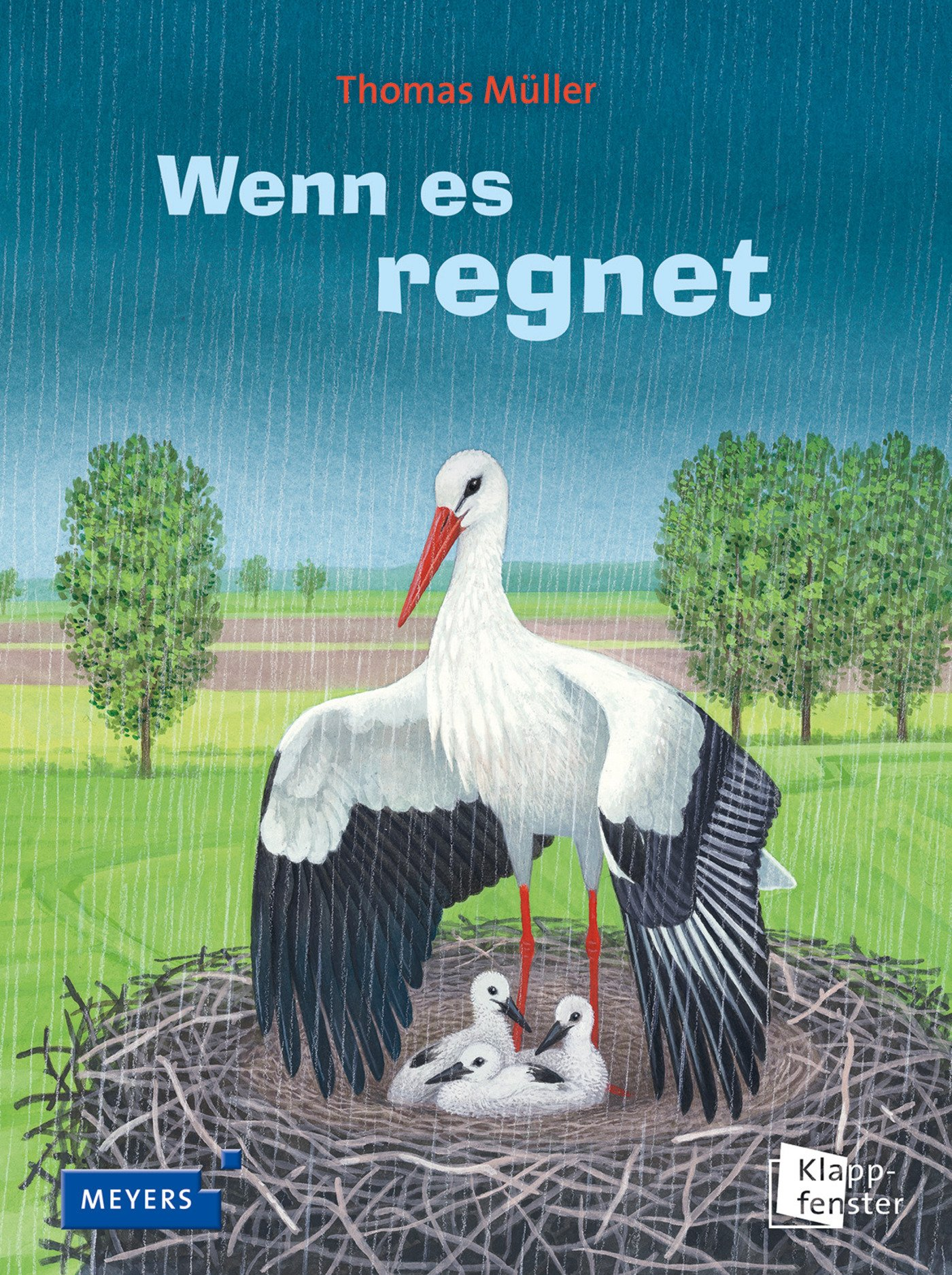 Wenn es regnet: Müller, Thomas: 9783411812462: Amazon.com: Books