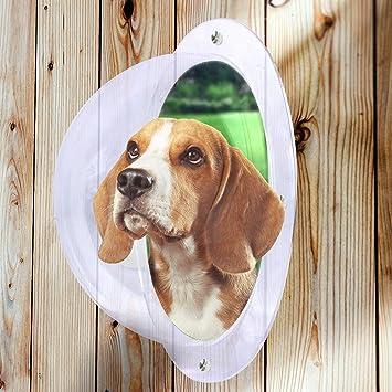 Pet Fence Dome Peek Bubble Window for Dogs