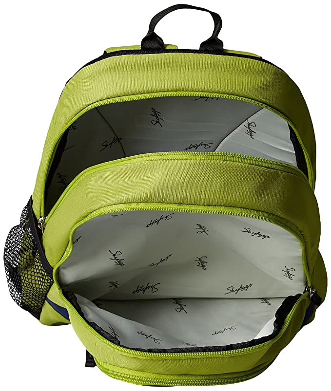 58aa249bc46 Skybags Groove 21 Ltrs Green Casual Backpack (BPGRO1GRN)  Amazon.in  Bags