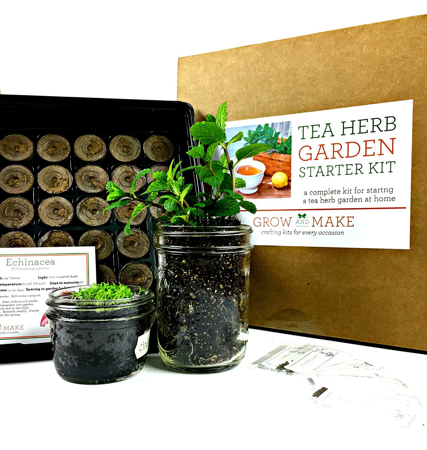 Amazon.com : Grow And Make DIY Tea Herb Garden Kit   Learn How To Grow Tea  Herbs From Home! : Plant Germination Kits : Garden U0026 Outdoor