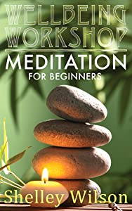 Meditation for Beginners (Wellbeing Workshop Book 1)