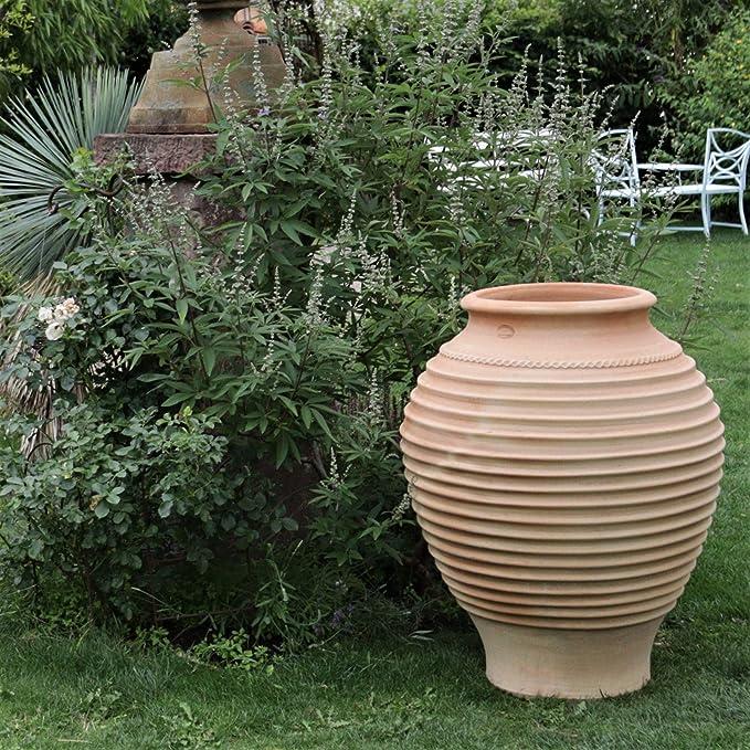 Amphore terracotta, méditerranéenne terrasse jardin extérieur, qualité Pot en céramique 35–100 cm, Agave 100 cm: Amazon.es: Jardín