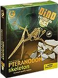 恐竜発掘セット プテラノドン