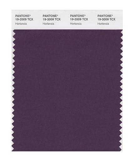 Pantone Smart 19 2009x Color Swatch Card Hortensia House Paint - Color-hortensia