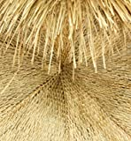 Forever Bamboo Mexican Palm Thatch Umbrealla
