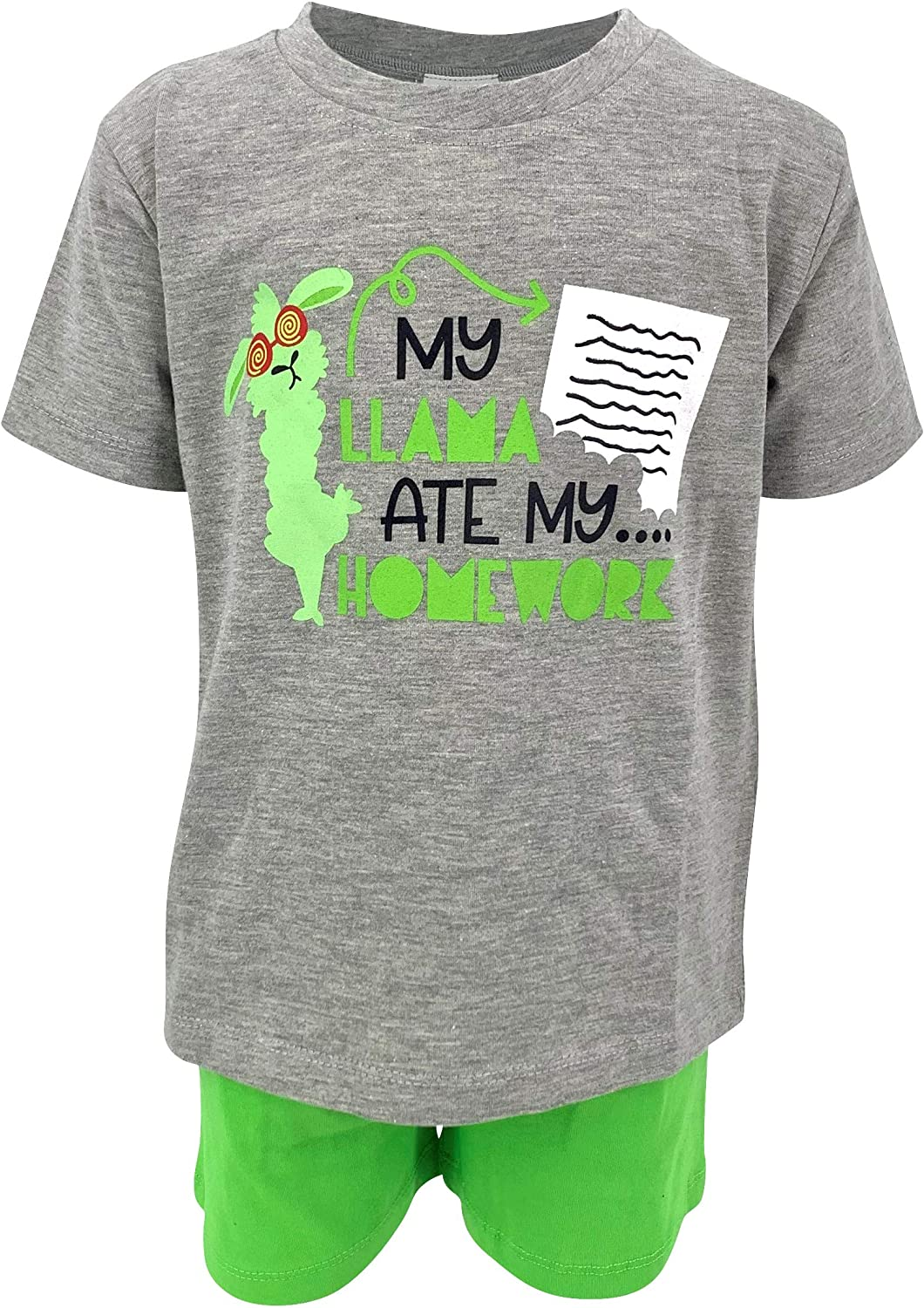 Unique Baby Boys My Llama Ate My Homework Back to School Outfit Gray