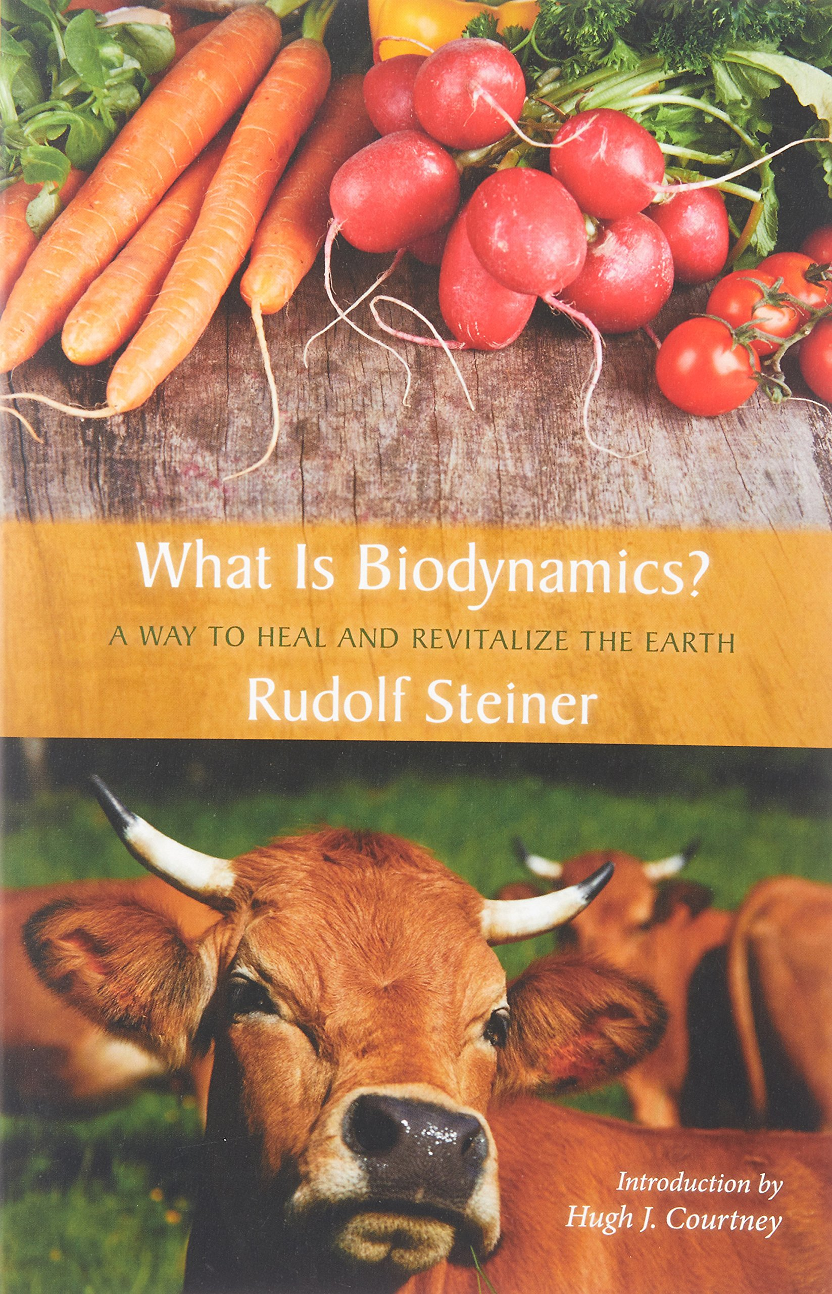 What Is Biodynamics?: A Way to Heal and Revitalize the Earth