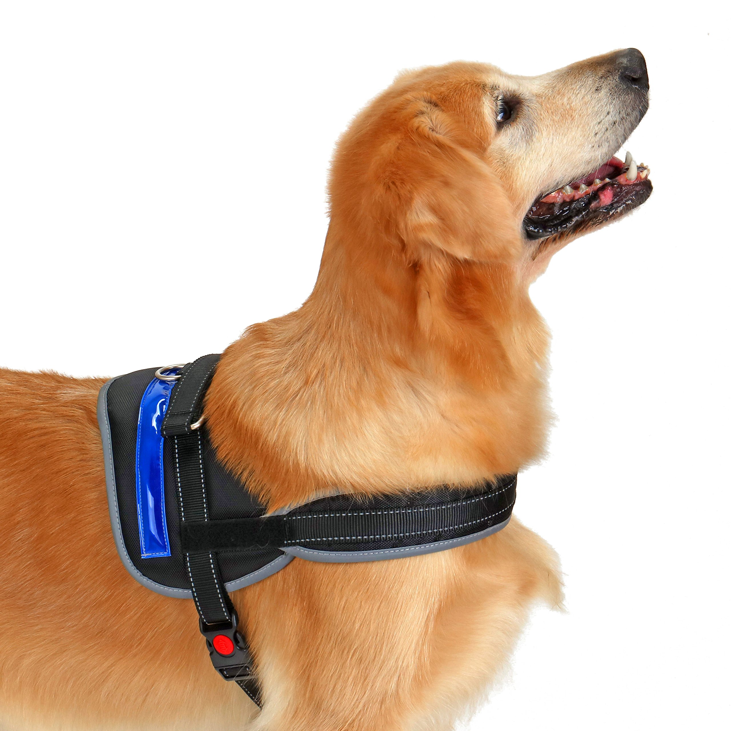 Heavy Duty Reflective Dog Harness with Safety Features [Premium Edition] Available in 4 Sizes, Specially Designed for Medium-Large Dog Breeds (Large, Electric Blue) by Pet Industries (Image #7)