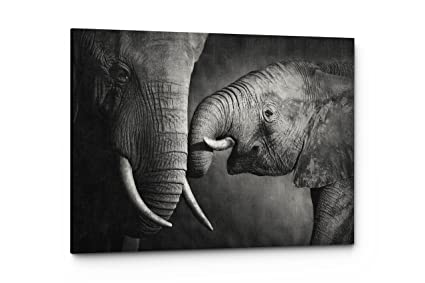 Black and white elephant animal photography canvas wall art prints 17w x 11quot