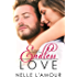 Endless Love: (The Sequel to Undying Love)