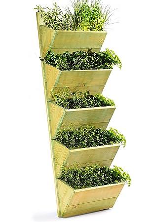 macetero de niveles para colgar en la pared para cultivar o exhibir plantas