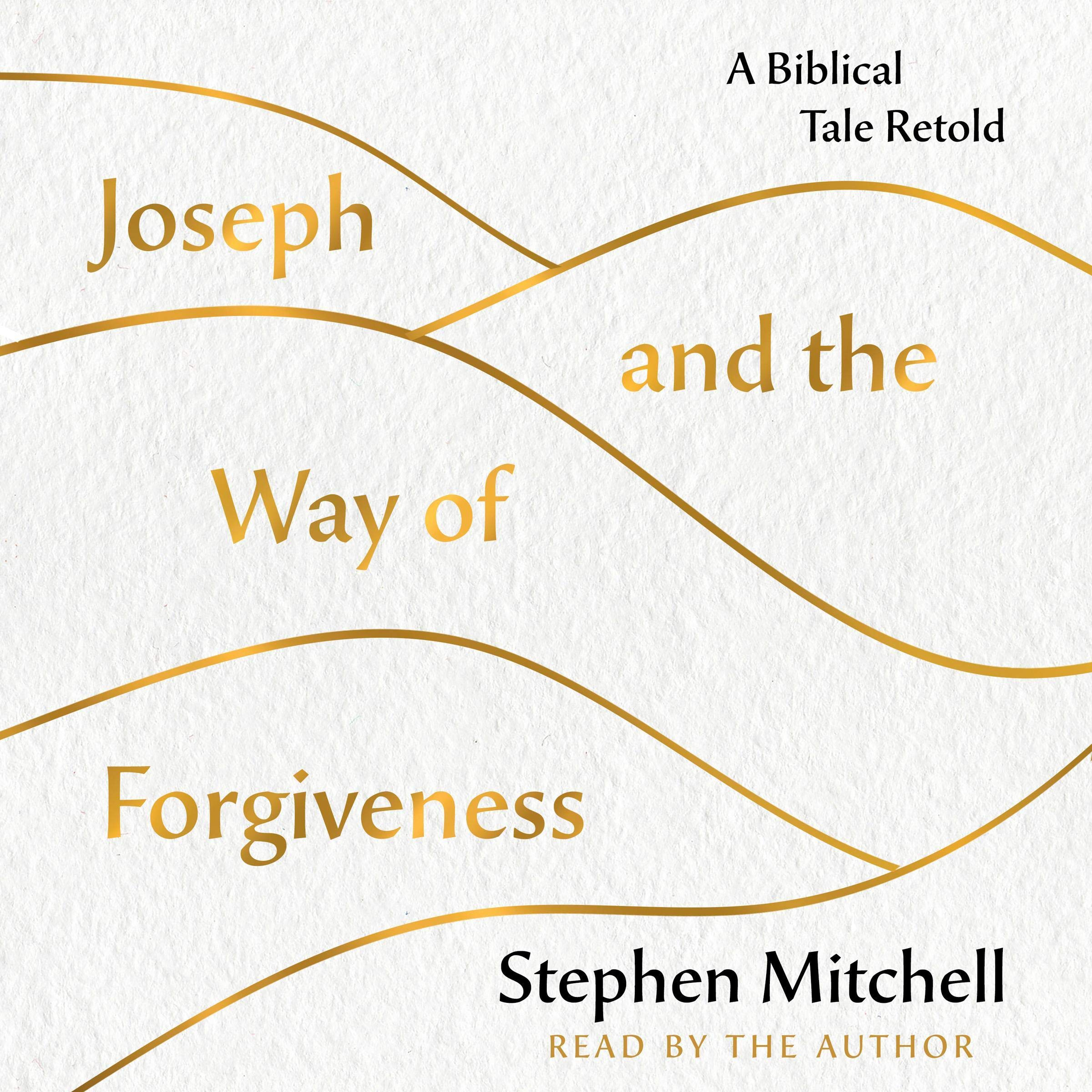 Joseph And The Way Of Forgiveness  A Biblical Tale Retold