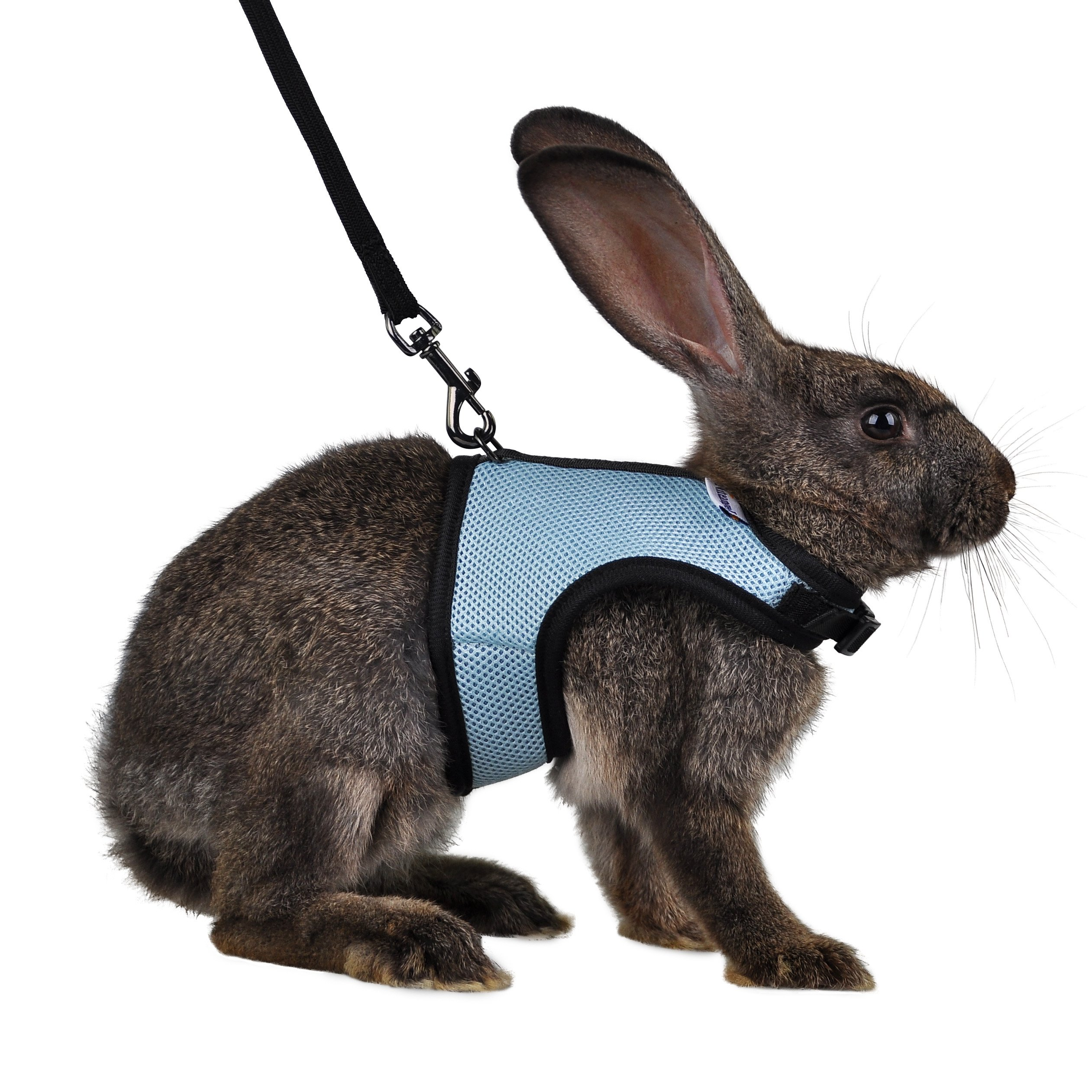 Niteangel Adjustable and Breathable Mesh Harness