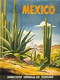 TRAVEL TOURISM MEXICO CACTUS DESERT SUN VILLAGE NEW ART PRINT POSTER CC4427