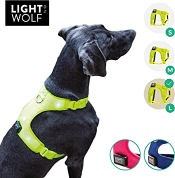 riijk LED Perros Chaleco para Mayor Seguridad, Chaleco Reflectante ...