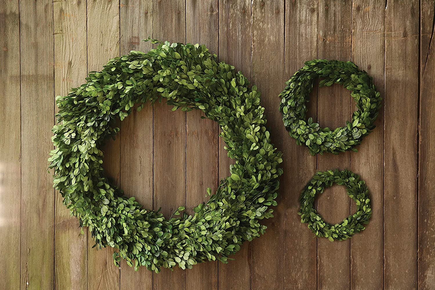 Round boxwood wreath for French farmhouse and European country style interiors.