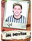 Make Up by One Direction The Complete Palette Collection Makeup, Niall, 16 Count