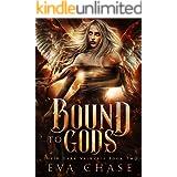 Bound to Gods: A Norse Mythic Urban Fantasy (Their Dark Valkyire Book 2)
