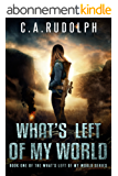 What's Left of My World: A Story of a Family's Survival (English Edition)