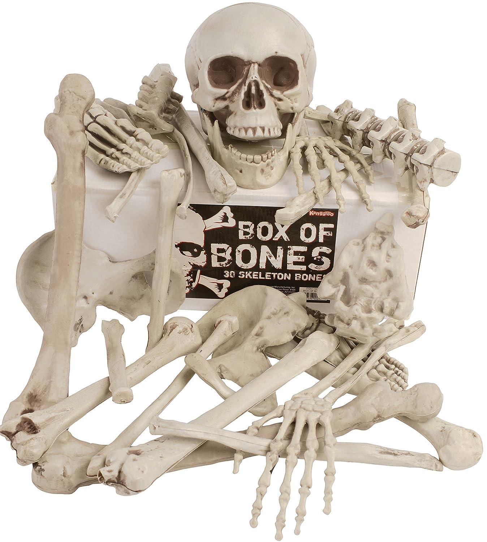 Kangaroos Box Of Bones; 30 Pc Set With Skull, Flexible Jaw, Skeleton Bones Kangaroo Manufacturing 10248