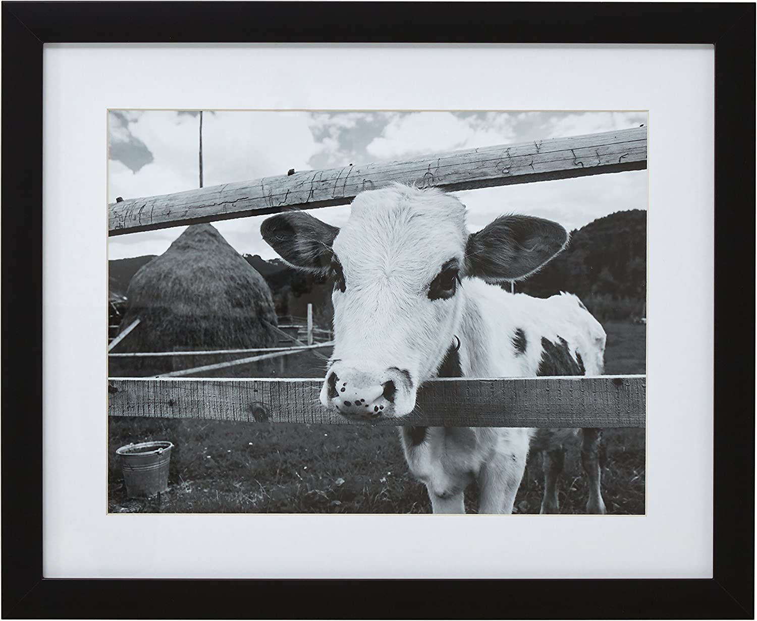 "Amazon Brand – Stone & Beam Black and White Curious Cow Photo Wall Art Decor - 13"" x 15"" Picture Frame, Black"