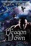 Dragon Down (Dragon Guard Book 22)