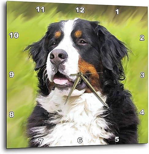 3dRose Bernese Mountain Dog Wall Clock, 10 by 10-Inch