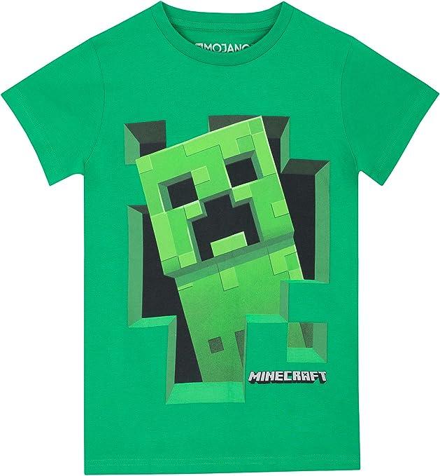Minecraft Camiseta para niño 11 - 12 Años: Amazon.es: Ropa y accesorios
