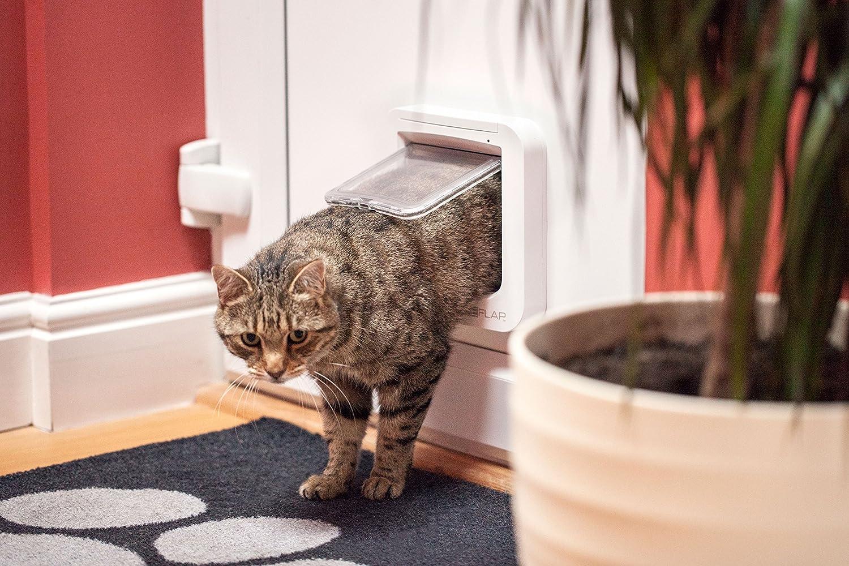 Chatière avec lecture de puce électronique pour chats