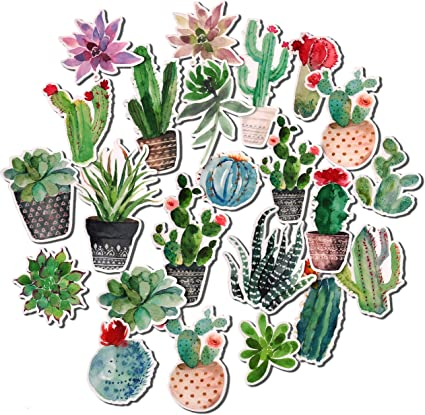 Navy Peony Watercolor Cactus and Succulent Stickers