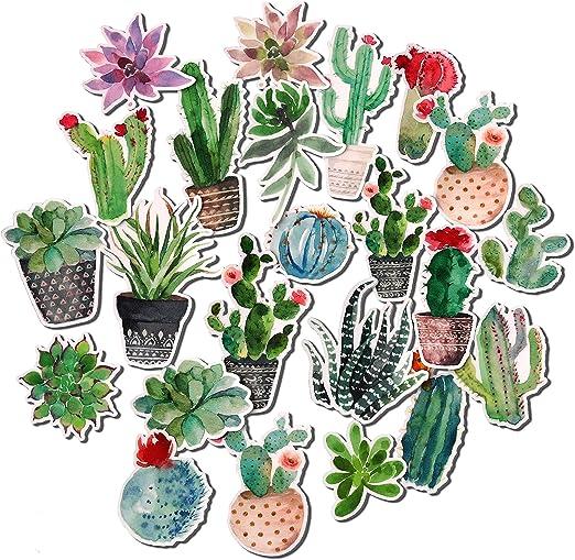 Pack de Pegatinas Decorativas de Navy Peony | Pegatinas de Cactus ...