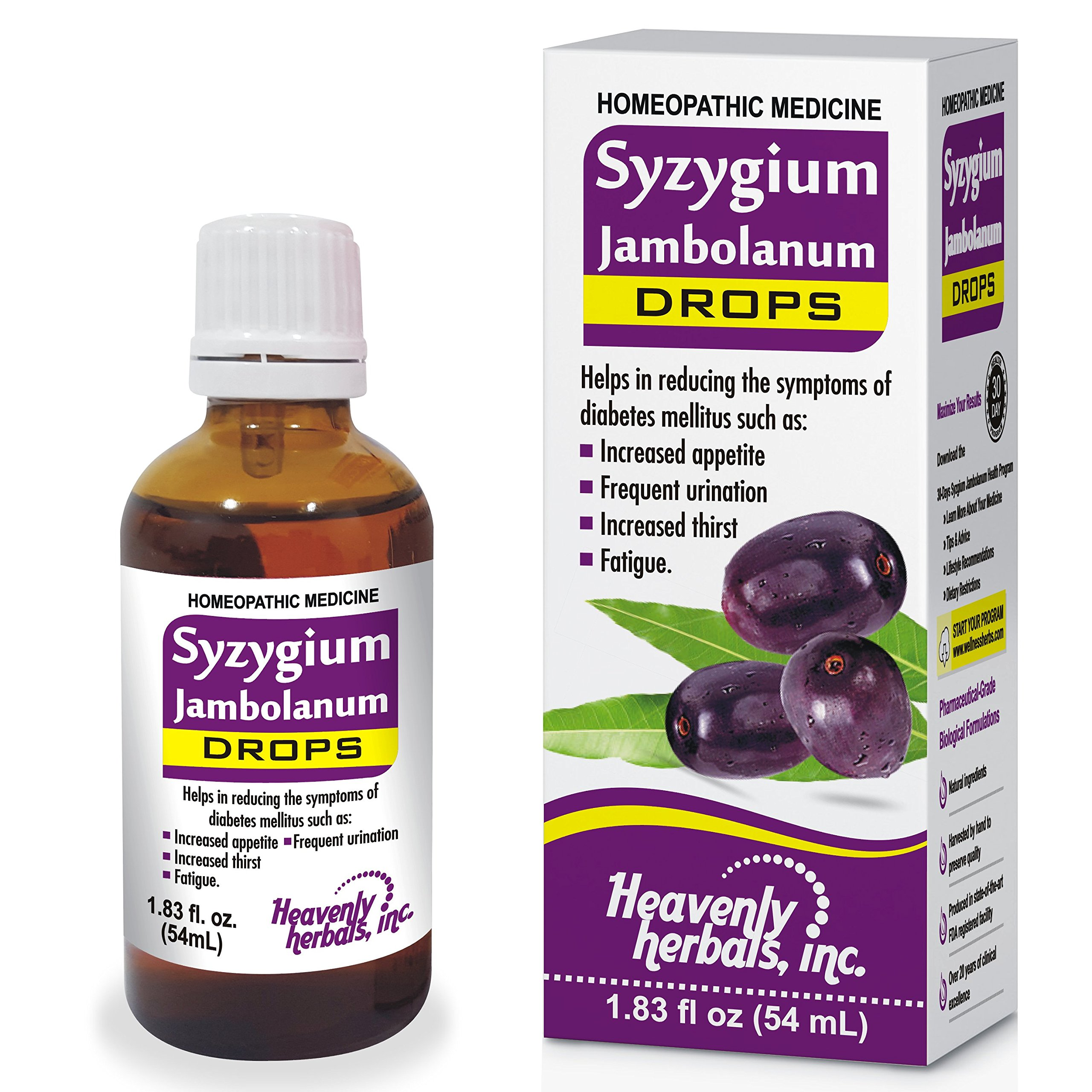 Syzygium Jambolanum Drops – for Frequent Urination, Increased Hunger, Fatigue | Regulates Blood Sugar Levels - Homeopathic Natural Alternative – 1.83Fl Oz by Heavenly Herbals, Inc.