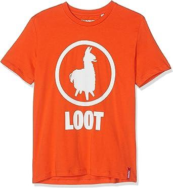 Fortnite Camiseta para Niños: Amazon.es: Ropa y accesorios