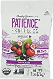 Patience Fruit & Co. Organic Classic Fruit Blend Fruit Snacks 1 Ounce (Pack of 15) Non-GMO USDA Organic Fruit Snacks