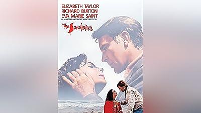 The Sandpiper (1965)