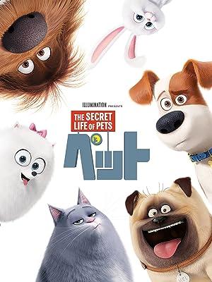映画『ペット』動画を無料でフル視聴出来るサービスとレンタル情報!見放題する方法まとめ!